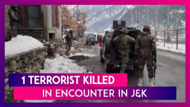 Jammu & Kashmir: One Terrorist Killed In Encounter With Security Forces In Ganderbal